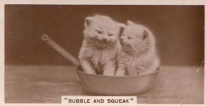 Bubble & Sqeak Cats In Frying Pan Cat Old Real Photo Cigarette Card