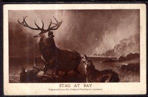 Stag at Bay,Landseer,Painting