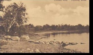 Maine Fryburg Lovewell Pond Albertype