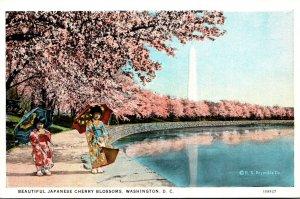 Washington D C Potomac Park BEautiful Japanese Cherry Blossoms Curteich