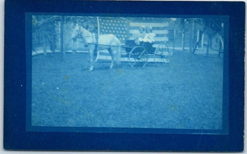 c1910s Cyanotype RPPC Real Photo Postcard 2 Girls Horse Cart w/ Large U.S. Flag