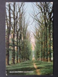 Leicestershire WOODHOUSES Beaumanor Avenue c1906 LOUGHBOROUGH DUPLEX 475