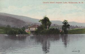 Carne's Island Asquam Lake, Holderness, New Hampshire, 00-10s