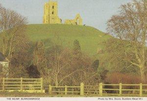 The Mump Murrowbridge Somerset Postcard