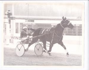 WINDSOR Raceway Harness Horse Race , 1960s ; BOOKMYER Wins 63rd race