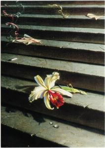 Lost Orchid by Vladimir Tretchikoff Flower on Stairs with Litter Art Postcard