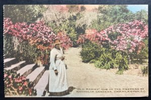 Mint Color Picture Postcard Black Americana Old Mammy One Of The Keeper
