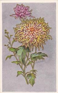Fred Lounsbury Birthday Greetings Flowers