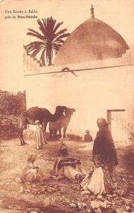 Algeria Une Kouba a Eddis pres de Bou-Saada Camels