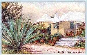 WARWICK, BERMUDA  Artist Signed C.F. Tucker RIDDELLS BAY HOMESTEAD  Postcard