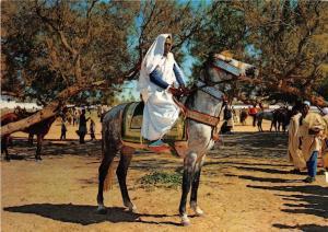 B91427 libya libua arab rider types folklore libia africa
