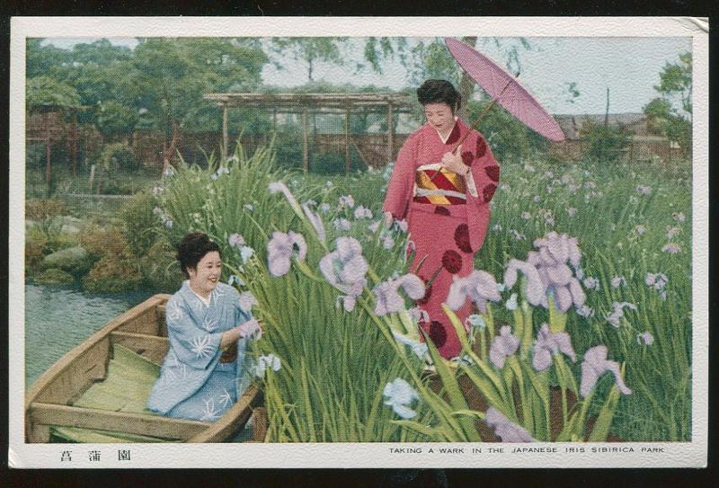 Vintage Japan Postcard Women taking a Wark in the Iris Sibirica Park TB3979
