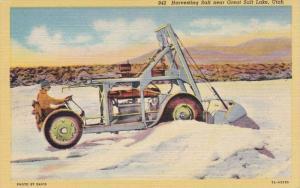 Harvesting Salt near Great Salt Lake, Utah, 1930-40s