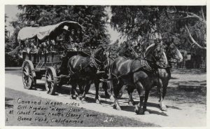 RP; BUENA PARK, California, 1950s; Covered Wagon ride, Knott's Berry Farm