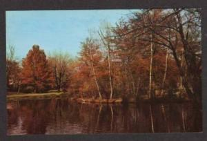 MA Elm Park WORCESTER MASSACHUSETTS MASS Postcard PC