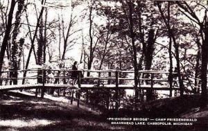 Michigan Cassopolis Friendship Bridge Camp Friedenswald Artvue