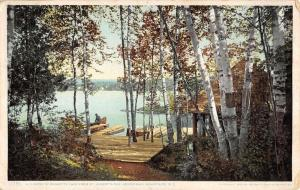 Adirondack Mountains New York Huberts Isle Waterfront Antique Postcard K106989