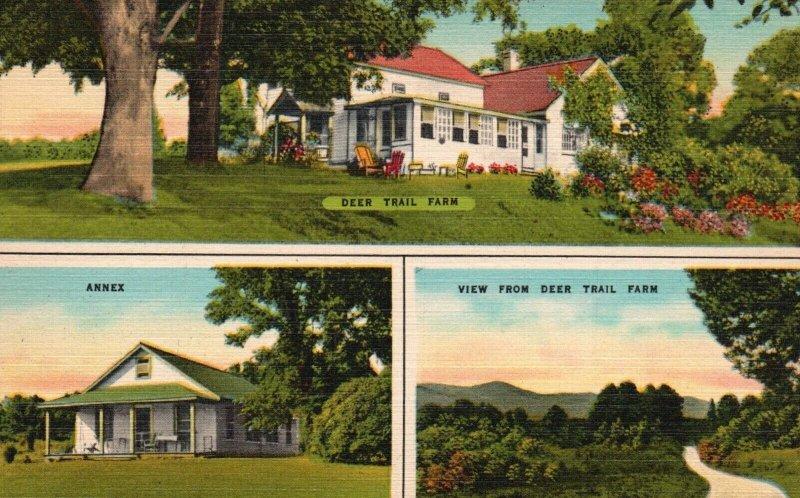 Leeds, New York, NY, Deer Trail Farm, Multi View, Linen Vintage Postcard g2031