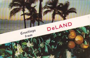 Greetings From Deland Florida 1981