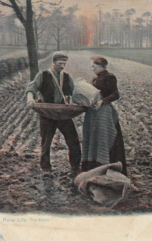 FARMERS ; Rural Life : The Sower , 1910 ; TUCK 1421