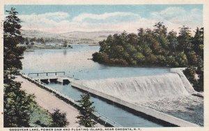 Near ONEONTA, New York, PU-1916; Goodyear Lake, Power Dam and Floating Island