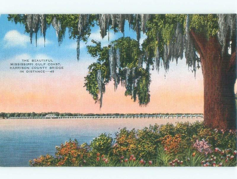 Unused Linen BRIDGE SCENE Biloxi & Gulfport Mississippi MS d4116
