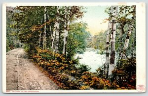 Keene Valley? Lake Placid? Adirondack Mountains~Dirt Rd~Detroit Publishing #9817