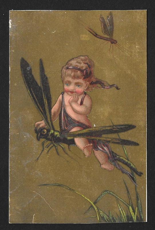 VICTORIAN TRADE CARD Stock Card Child on Dragonfly