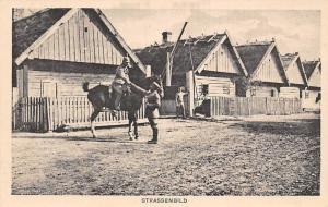 Poland Pferde Strassenbild, Street Road Picture Horse