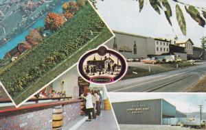 HAMMONDSPORT, New York, 1940-60s; 5 Views, Goal Seal Winery