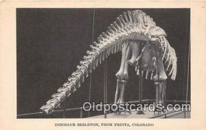 Fruita, CO, USA Postcard Dinosaur Skelton