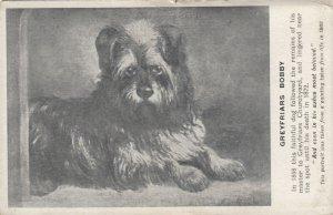 Dog Portrait , 1900-10s ; Greyfriars Bobby