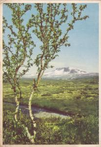 Norway: From Dovrefjell towards Snohetta, PU-1950