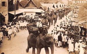 Vietnam, Viet Nam Elephant Parade  Elephant Parade