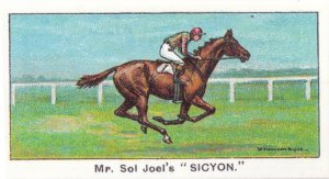 Sicyon Winners On The Turf 1923 King George Stakes Horse Racing Cigarette Card