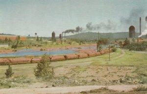 BEND , Oregon , 50-60s; Logs on train beds leaving Pine Sawmill