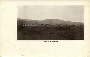 new zealand, WELLINGTON, Town View (1910s) Postcard