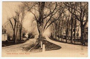 Calais, Maine, Calais Avenue