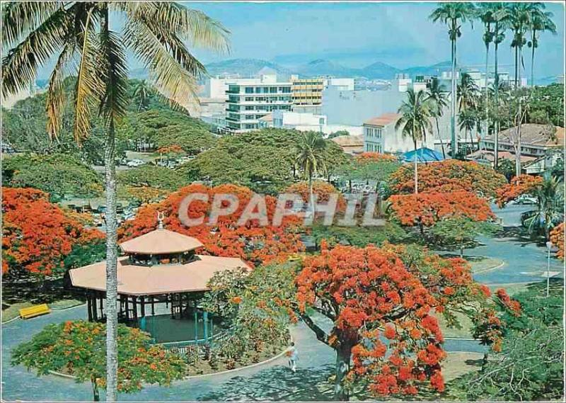 Modern Postcard New Caledonia Noumea Places Coconuts