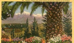 CA - Orange Groves & Snow-Capped Mountains