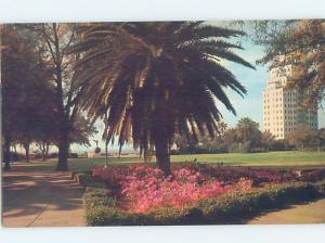 Pre-1980 PARK SCENE Jacksonville Florida FL H3016