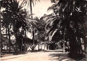 Alger Algeria, Alger, Algerie Jardin d'Essai Alger Jardin d'Essai