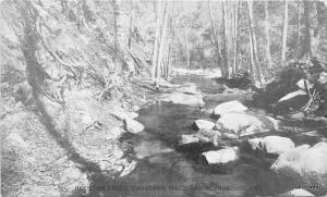 C-1910 Houston Creek Thousand Pines San Bernardino California postcard 5986