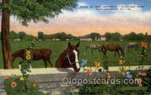 Mrs Whitney's Greentree Farm Old Vintage Antique Postcard Post Card Lexington...