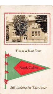 G45/ North Collins New York RPPC Postcard Pennant High School