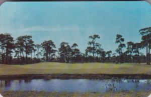 Florida Belleair 9th Green At Pelican Golf & Country Club