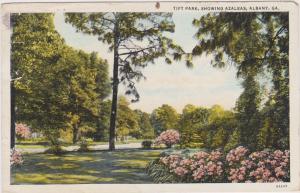 ALBANY , Georgia , 30-40s; Tift Park, Showing Azaleas