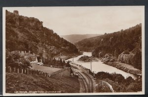 Herefordshire Postcard - The Three County Vew, Symonds Yat  RS9816