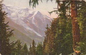 Switzerland Chamonix Le Mont-Blanc 1913