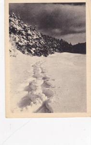Effet de Neige Pres du Lac Beauport, Tourist Bureau, Quebec, Canada, 20-30s
